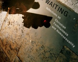 Washed and Waiting: Reflections on Christian Faithfulness and Homosexuality by Wesley Hill